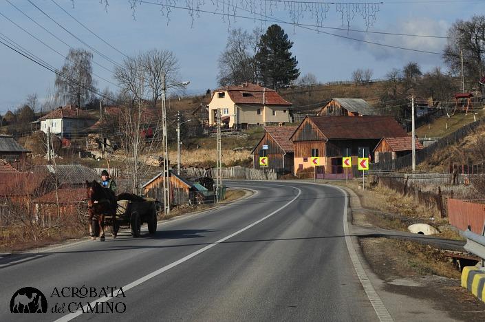 carros a caballo transilvania