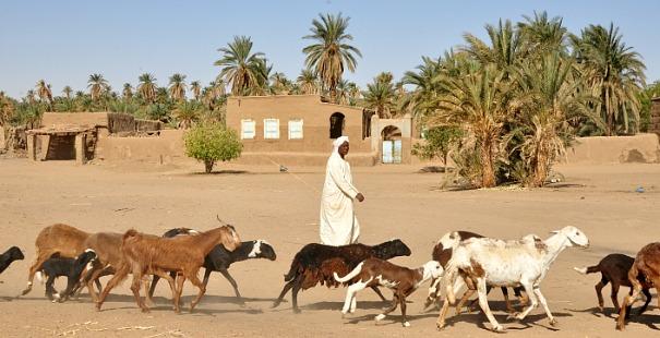 nubios-sudan