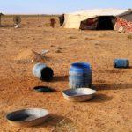 24-30 Nov, 2005.  Un te con los amos del desierto.