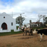 """MISTERIO Y POCO TRÁNSITO EN LA """"RUTA DE LOS CHARRUAS"""""""