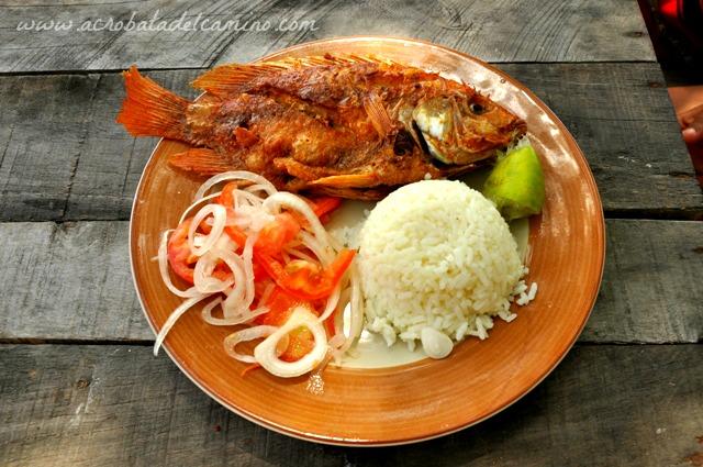 pescado del caribe