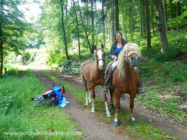 alquilar caballos en alemania