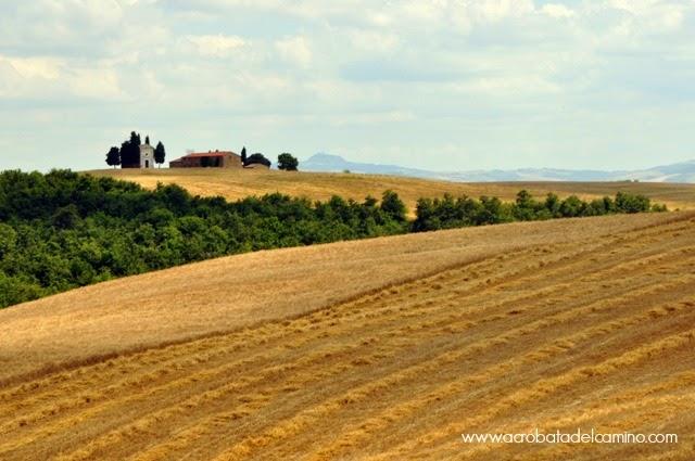 campos de toscana