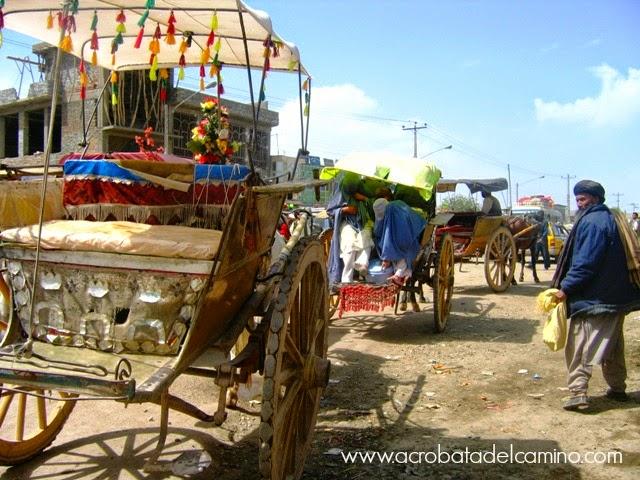 taxis a caballo