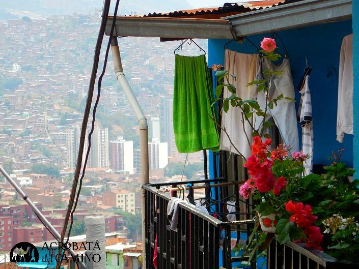 balcon con rosas
