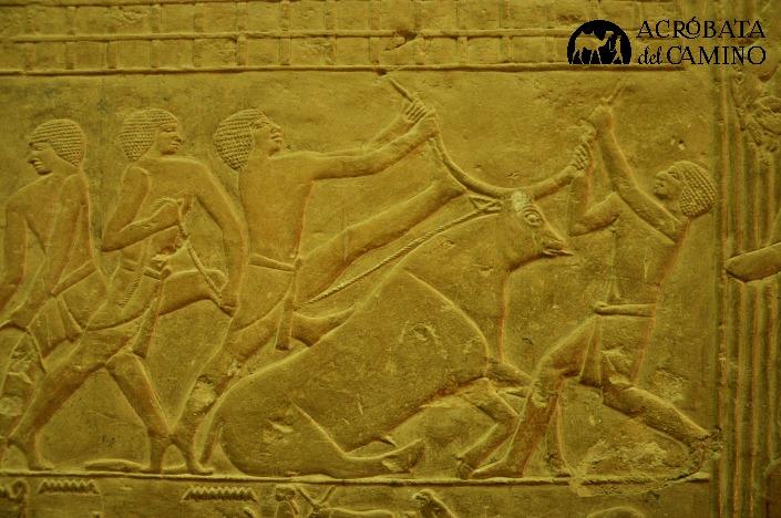 toro-sagrado-egipto