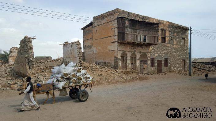 La vida sigue entre las ruinas sin que nadie entienda su valor, y mucho menos que podrian vivir del turismo si fueran mas astutos y menos islamistas.