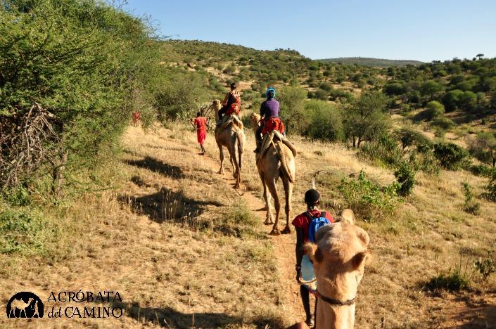 Al fin me toc´+o vivir mi logo: ¡avanzamos en caravana de camellos!