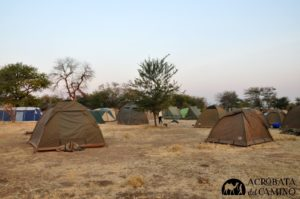 nyani-camp