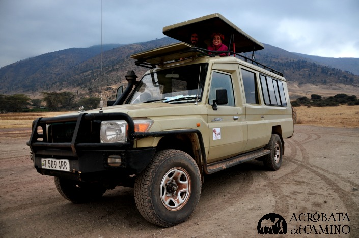 safari en ngorongoro