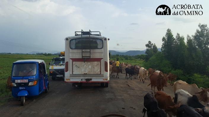transporte publico en Etiopia