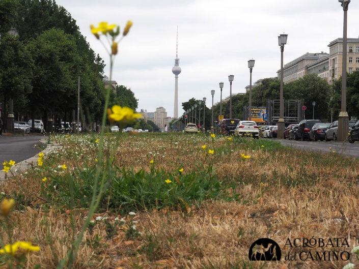 torre de television de berlin