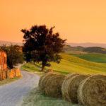 Alojamientos rurales en Europa: tendencias en 2020