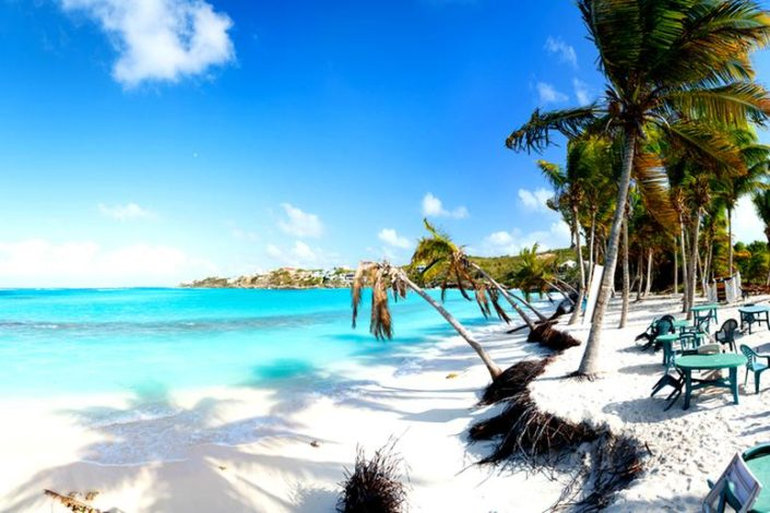 palmeras en la playa en Anguilla