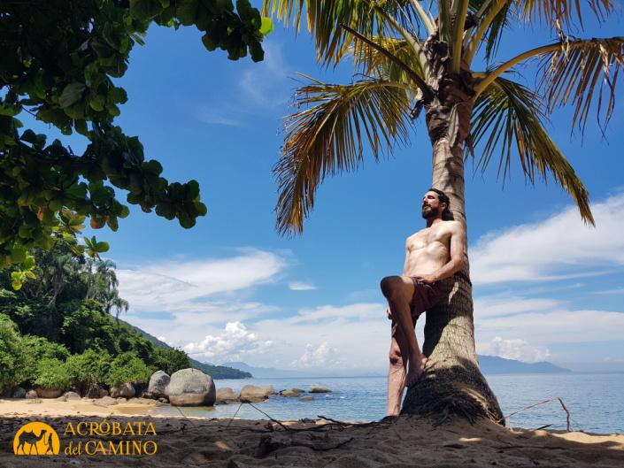 playa de Palmas en Isla grande