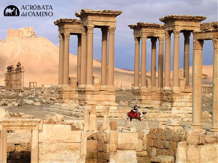 ruinas de palmira siria