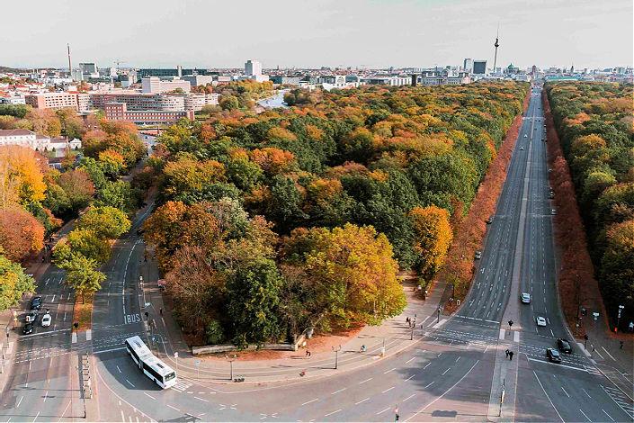 vista aerea del parque tiergarten en otoño